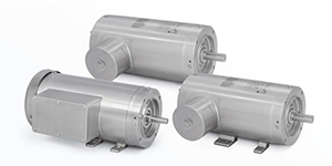 Food Safe Motors