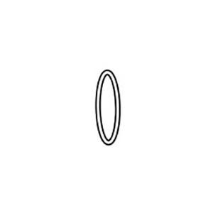 Walchem 102919 Water Treatment Controller O-Ring